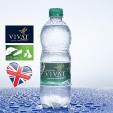 Vivat Sparkling Water (500ml)